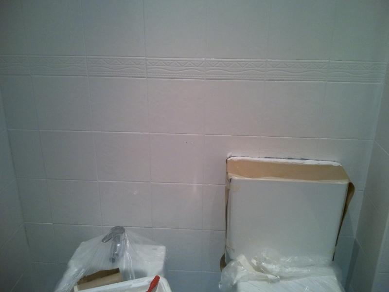 Obras en casa xi c mo reformar ba o sin obra una cosa - Pintar bano con hongos ...